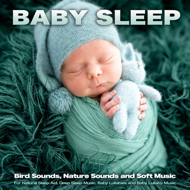 Baby Sleep: Bird Sounds, Nature Sounds and Soft Music For Natural Sleep Aid, Deep Sleep Music, Baby Lullabies and Baby Lullaby Music