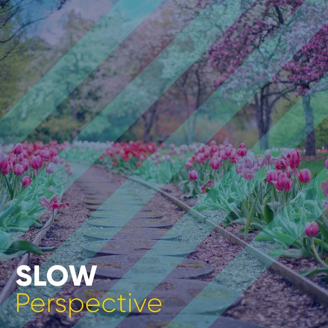 # Slow Perspective