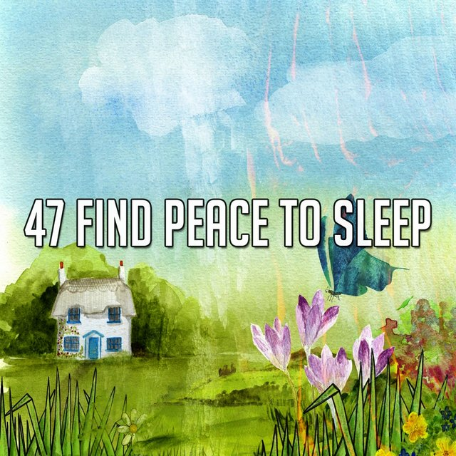 47 Find Peace to Sle - EP
