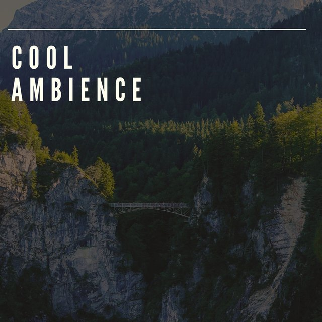 # Cool Ambience