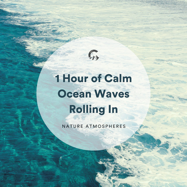 1 Hour of Calm Ocean Waves Rolling In