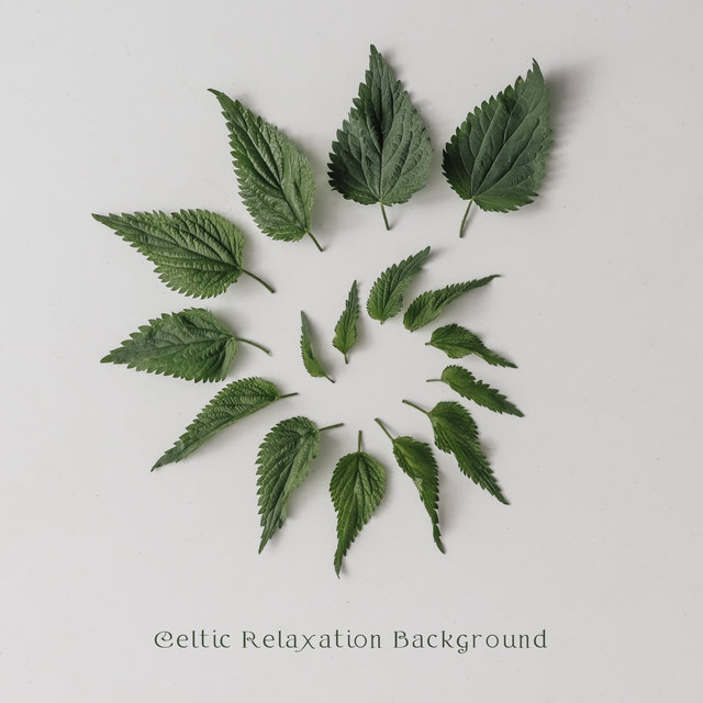 Celtic Relaxation Background - Unique Irish New Age Music Perfect for Sleep, Rest, Meditation, Yoga and Relax, Most Beautiful Nature Sounds, Harmony of Body and Mind, Find Peace