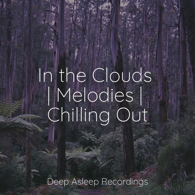 In the Clouds | Melodies | Chilling Out