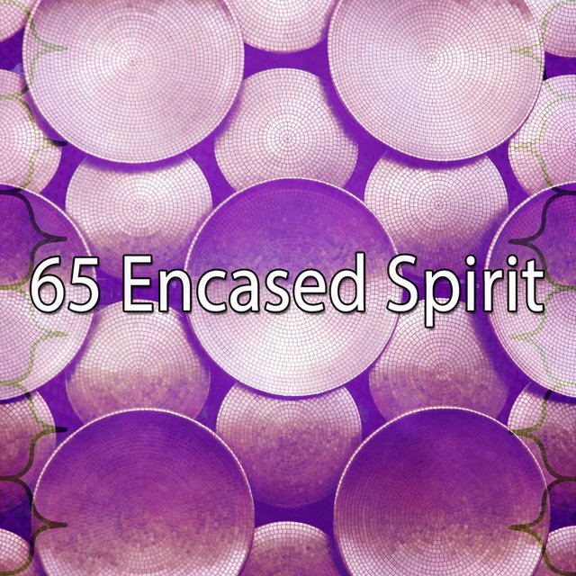65 Encased Spirit