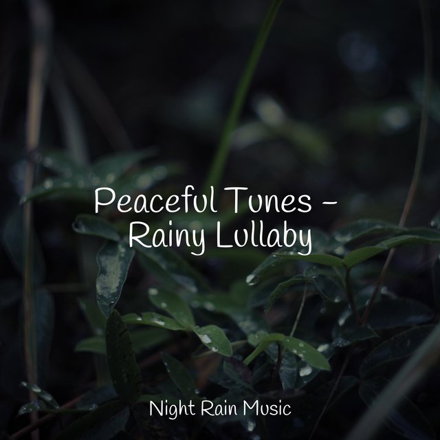 Peaceful Tunes - Rainy Lullaby