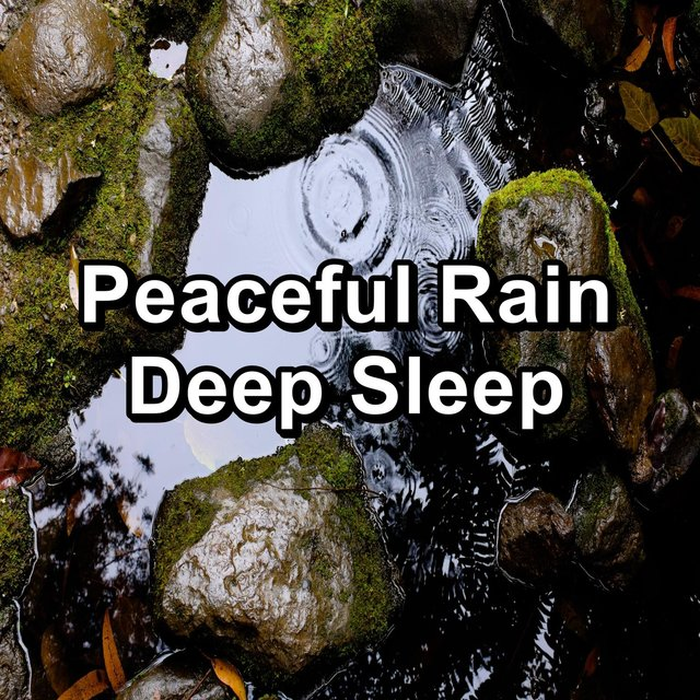 Peaceful Rain Deep Sleep