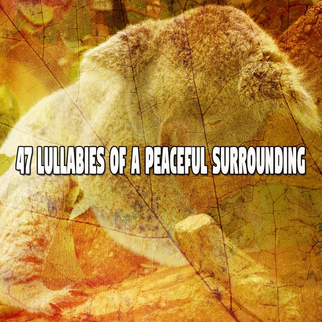 47 Lullabies of a Peaceful Surrounding