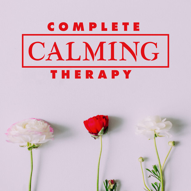 Complete Calming Therapy: Healing Silence, Deep Concentration, High Mindfulness