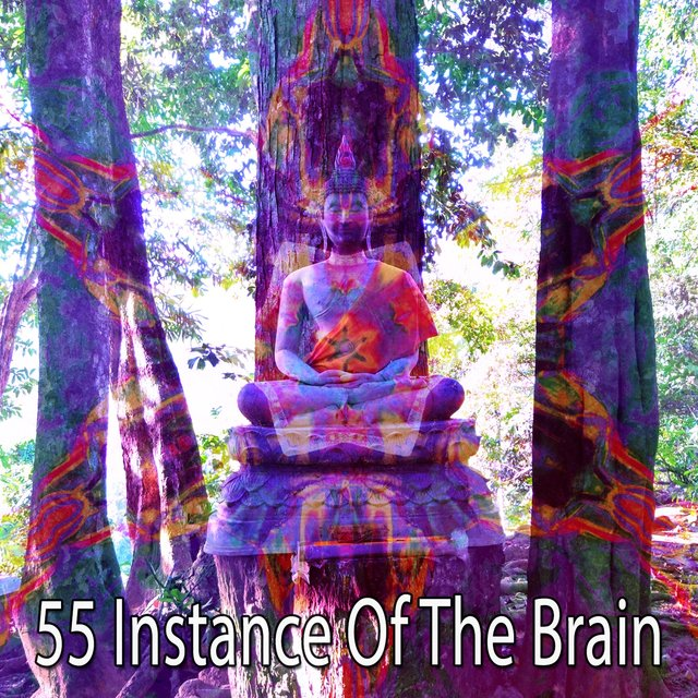 55 Instance of the Brain