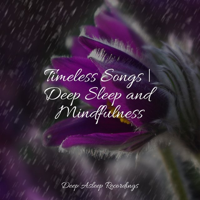 Timeless Songs | Deep Sleep and Mindfulness