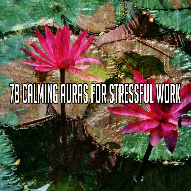 78 Calming Auras for Stressful Work