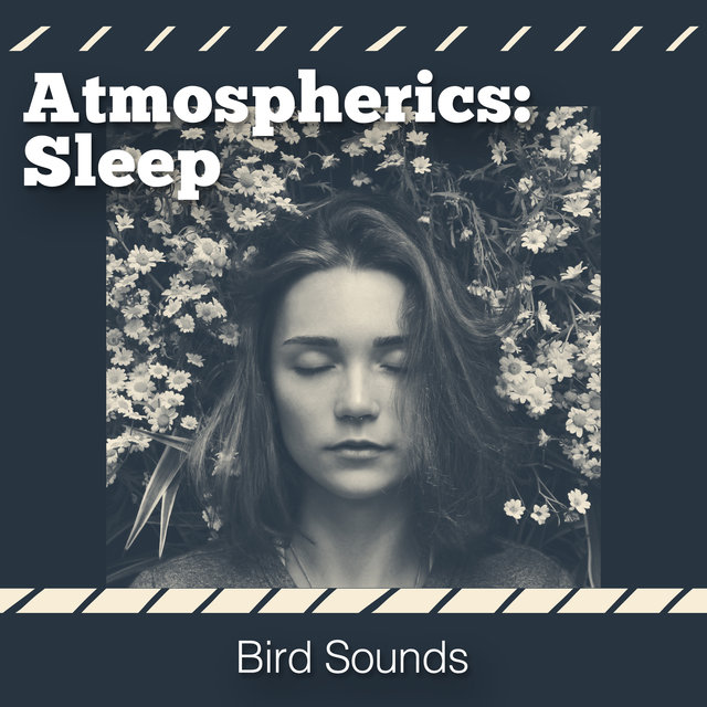 Atmospherics: Sleep