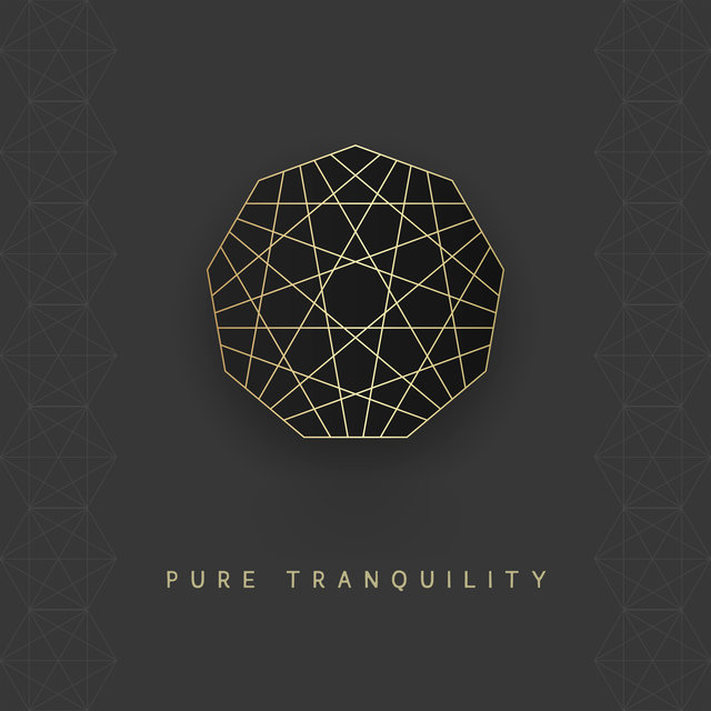 Pure Tranquility – Meditation and Yoga Exerices, Mindfulness Concentration, Calm Down