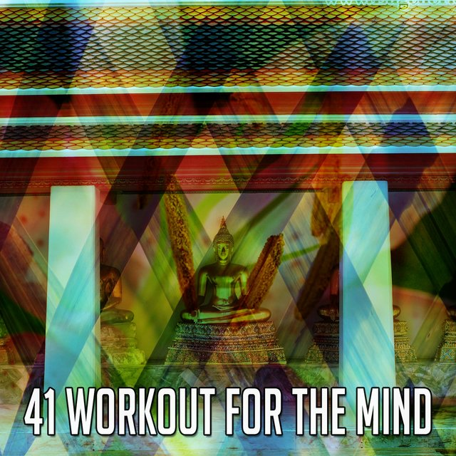 41 Workout for the Mind