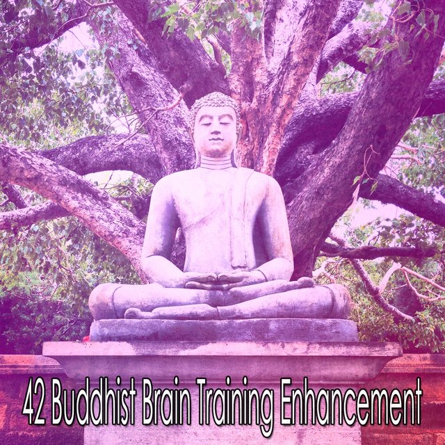 42 Buddhist Brain Training Enhancement