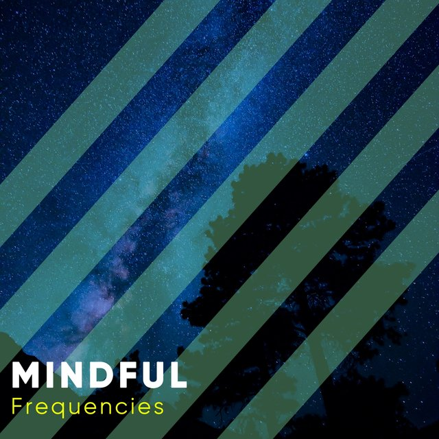 # 1 Album: Mindful Frequencies