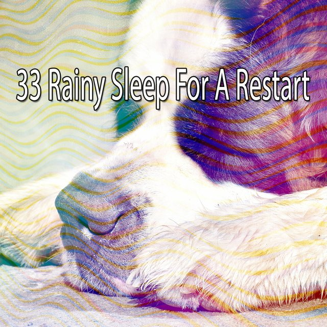 33 Rainy Sleep for a Restart