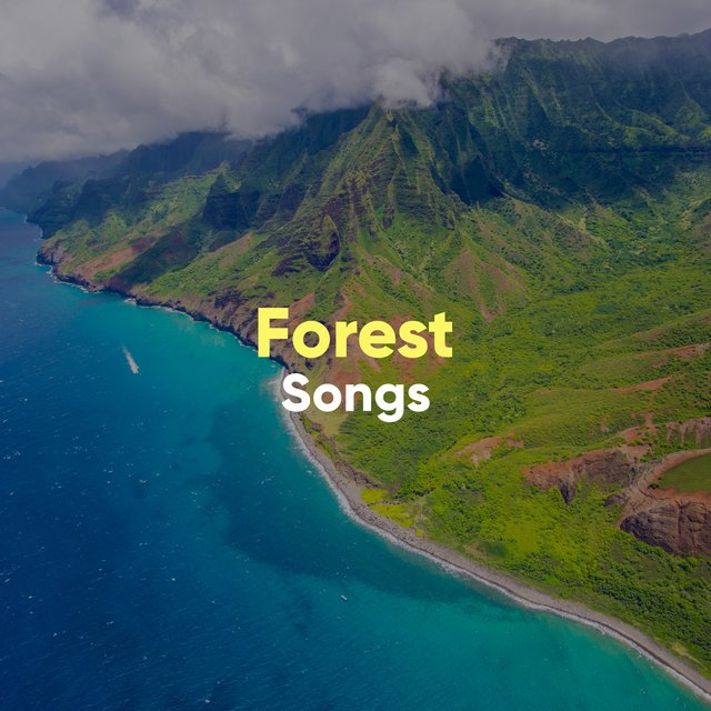 Spiritual Rustic Forest Songs