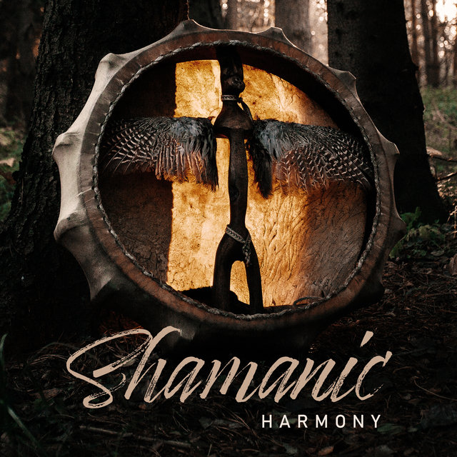 Shamanic Harmony - Native American Chants, Spiritual Healing Music, Tribal Journey