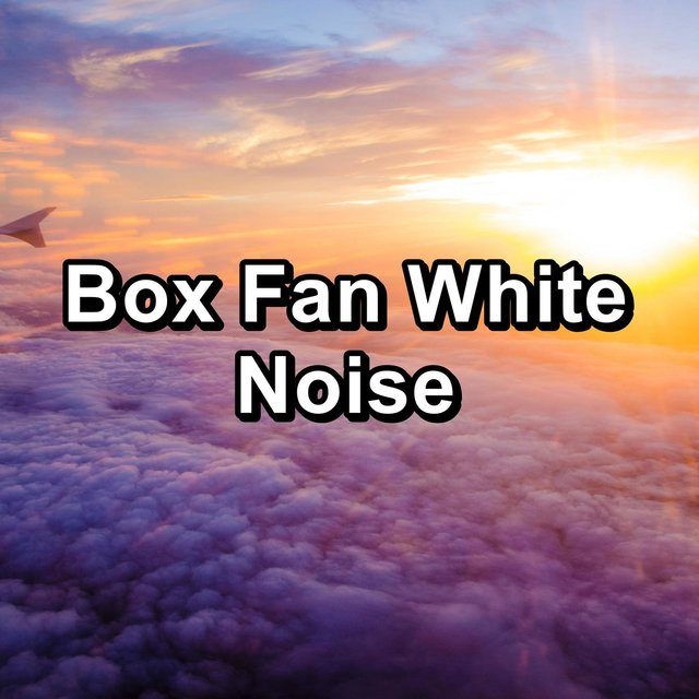 Box Fan White Noise