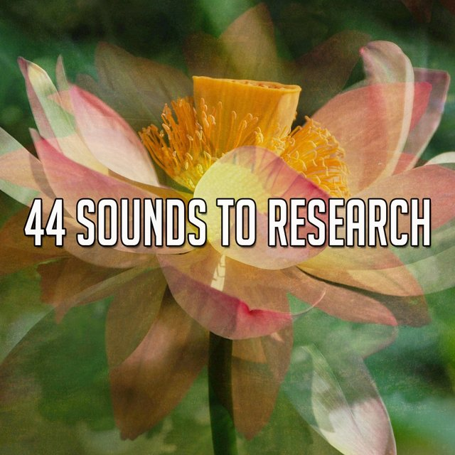 44 Sounds to Research