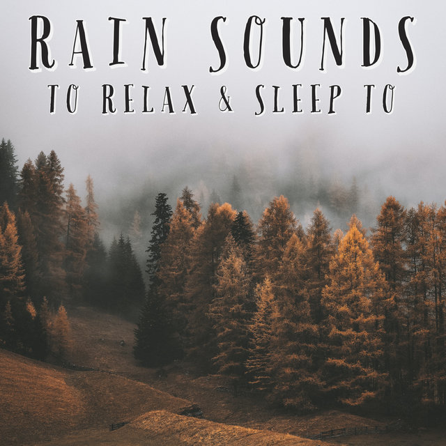 Rain Sounds To Relax & Sleep To