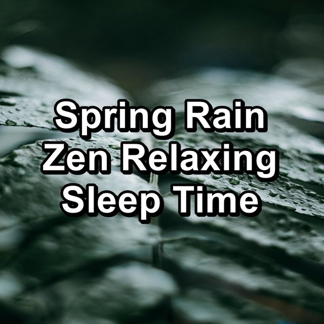 Spring Rain Zen Relaxing Sleep Time