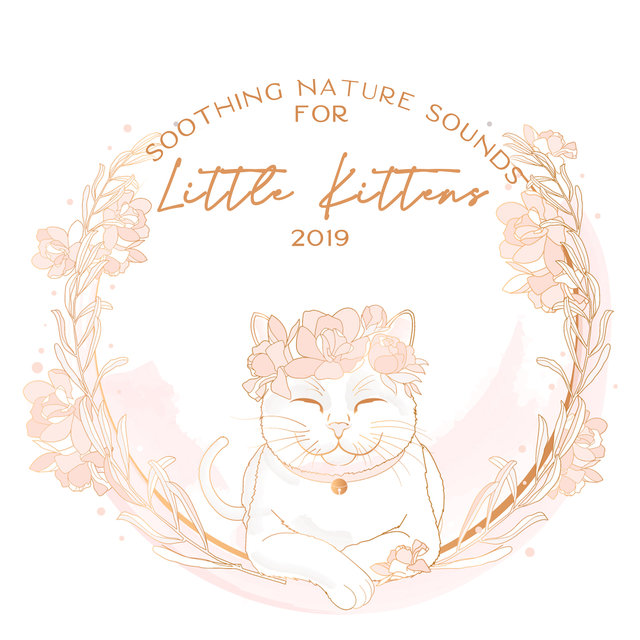Soothing Nature Sounds for Little Kittens 2019
