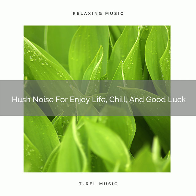 Hush Noise For Enjoy Life, Chill, And Good Luck