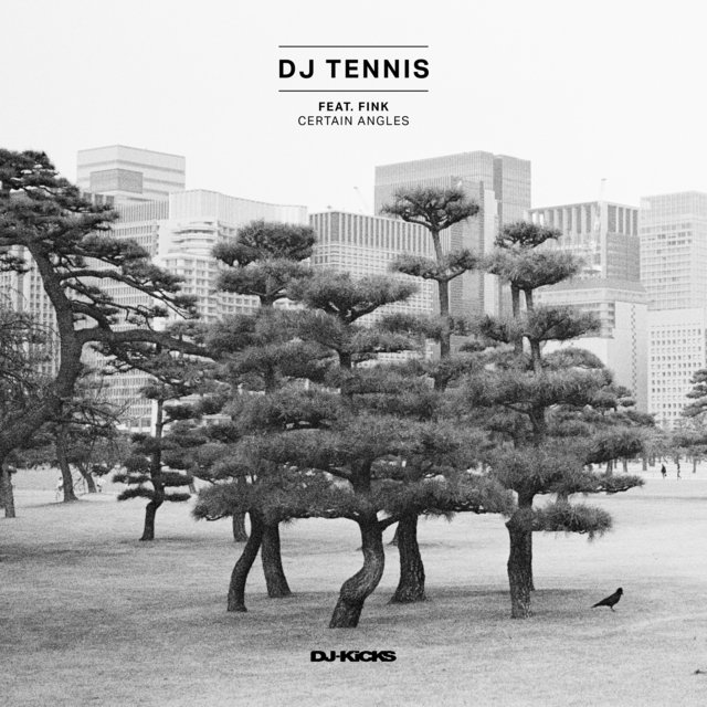 Cover art for album Certain Angles by DJ Tennis, Fink