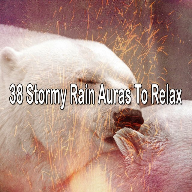 38 Stormy Rain Auras to Relax