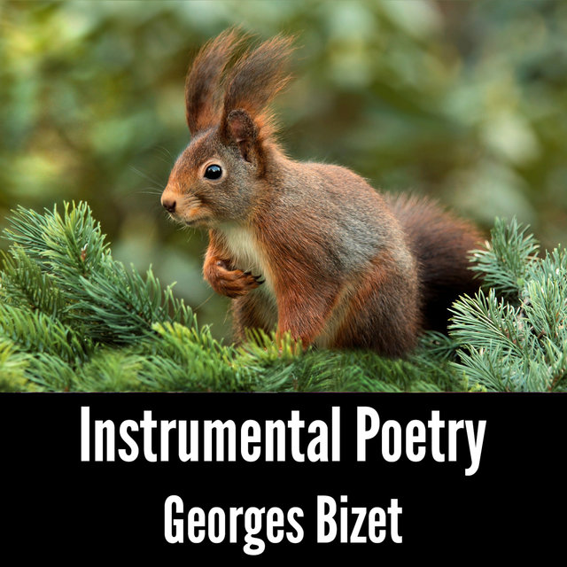 Instrumental Poetry: Georges Bizet