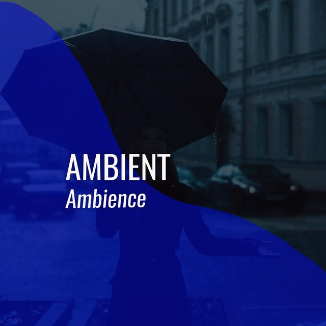 # 1 Album: Ambient Ambience