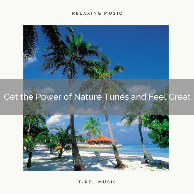 2020 Best: Get the Power of Nature Tunes and Feel Great