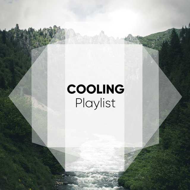 # 1 Album: Cooling Playlist