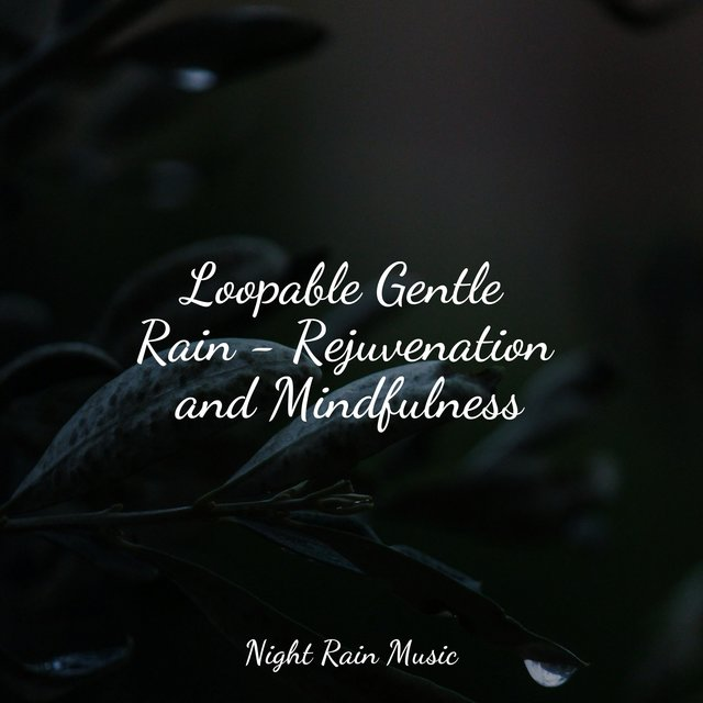 Loopable Gentle Rain - Rejuvenation and Mindfulness