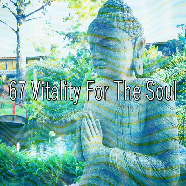 67 Vitality for the Soul