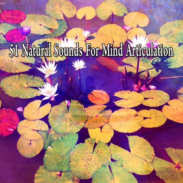 51 Natural Sounds for Mind Articulation