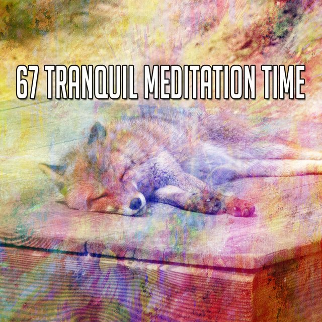 67 Tranquil Meditation Time