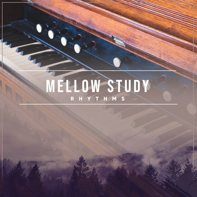 Mellow Study Grand Piano Rhythms