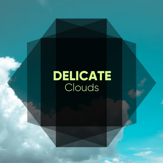 # 1 Album: Delicate Clouds