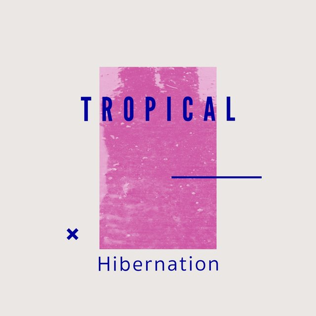 # 1 Album: Tropical Hibernation