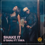 Shake It (feat. Tiwa Savage)