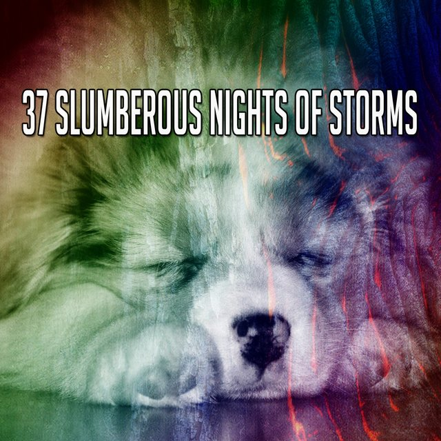 37 Slumberous Nights of Storms