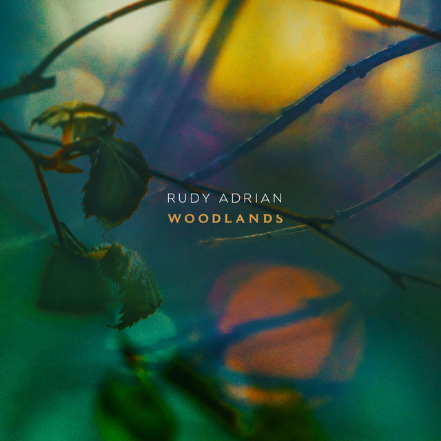 Cover art for album Woodlands by Rudy Adrian