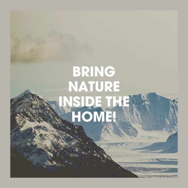 Bring Nature Inside the Home!