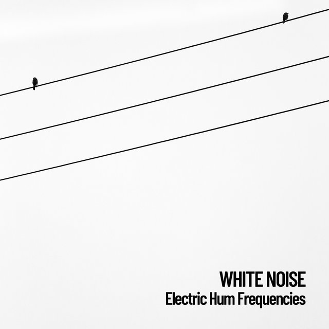 White Noise: Electric Hum Frequencies
