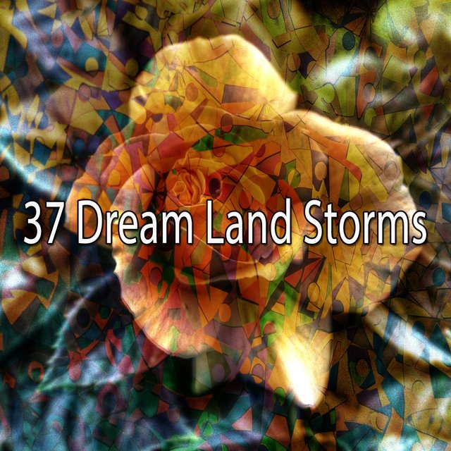 37 Dream Land Storms