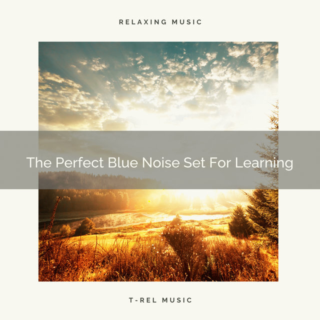 The Perfect Blue Noise Set For Learning