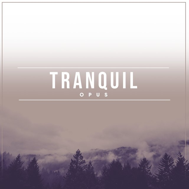 # Tranquil Opus